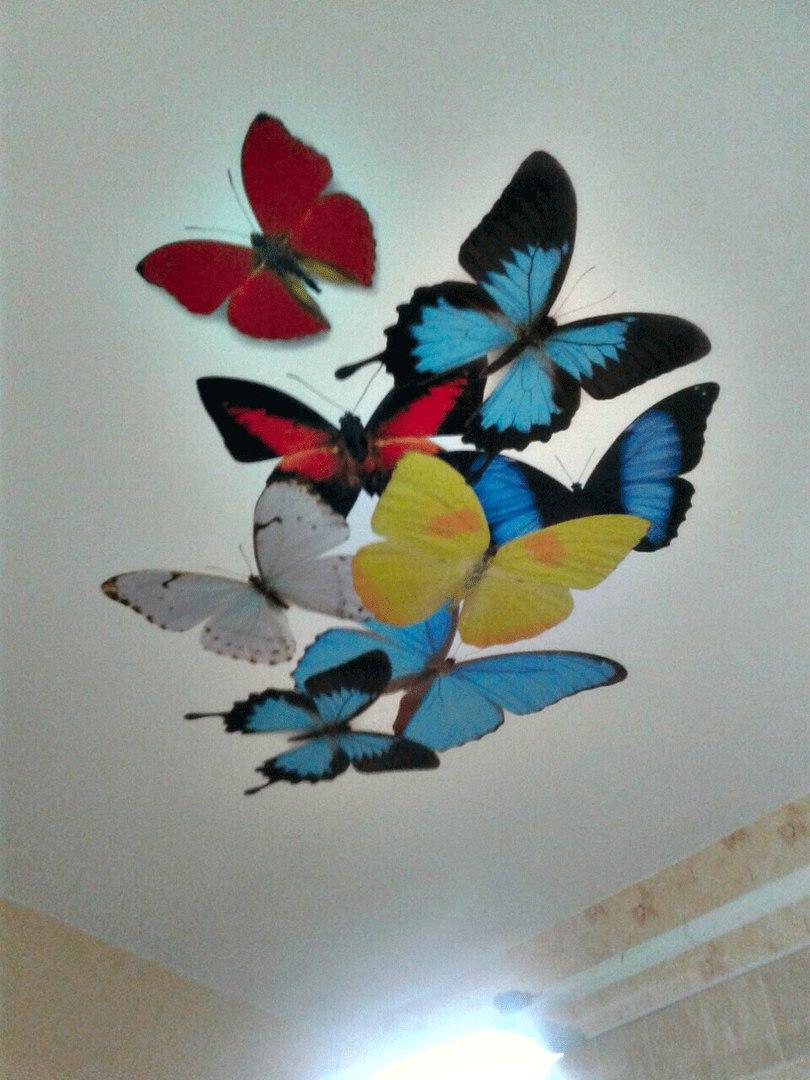 фотопечати на потолке у наших клиентов -бабочки