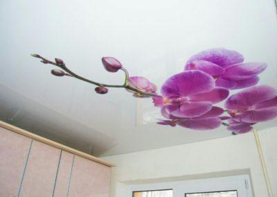 Глянцевый натяжной потолок с фотопечатью на кухне